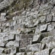 Stairs in ancient Copan — Stock Photo