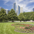 Stock Photo: Flowers in Downtown Chicago