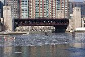 Lake shore sürücü Köprüsü — Stok fotoğraf