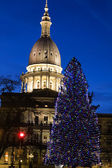 Lansing, Michigan - State Capitol — Foto Stock