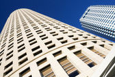 Looking up in Downtown Tampa — Stockfoto