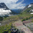 Beatiful Rockies — Stock Photo #3594947