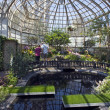 Stock Photo: Lincoln Park Conservatory inside