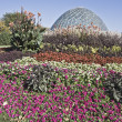 Dome of Botanic Garden — Stock Photo #3595030