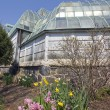 Lincoln Park Conservatory — Stock Photo #3595567