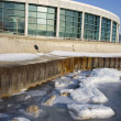 Stock Photo: Shedd Aquarium in Chicago
