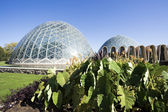 Domes of a Botanic Garden — Stock Photo