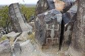 Sitio de petroglifos de tres ríos — Foto de Stock