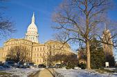 Lansing, Michigan - State Capitol — Stock Photo