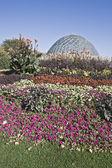 ボタニック ガーデンのドーム — ストック写真