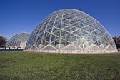 Domes of a Botanic Garden in Milwaukee — Stock Photo