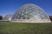 Domes of a Botanic Garden in Milwaukee — Stock Photo