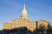 Lansing, Michigan - State Capitol — Stock Photo