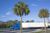 Semi truck parkerade under palmer — Stockfoto