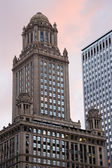 Historic building in downtown Chicago — Stock Photo