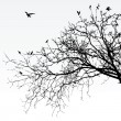 Royalty-Free Stock  : Branches