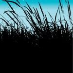 Reeds — Stock Vector #3780138