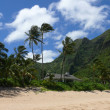 Shack on Haena beach — Stock Photo