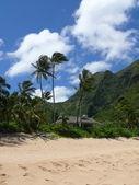 Shack on Haena beach — Stock Photo