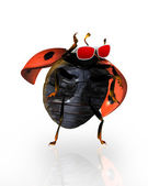 Ladybirds wearing shades — Stock Photo