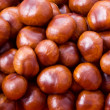 Chestnut background — Stock Photo #3801479