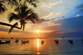 """Sunset """"Nirvana"""" — Stock Photo"""