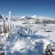 Stock Photo: Winter landscape on Rannoch Moor in Highlands of Scotland.