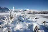 Winter landscape on Rannoch Moor in the Highlands of Scotland. — Stock Photo