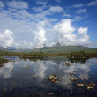 Stock Photo: Rannoch Moor in the Scottish Highlands.