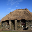 Thatched Cottage. — Stock Photo
