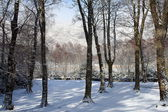 Winter scene in Lochaber. — Stock Photo