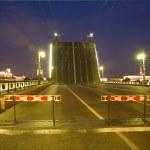 Bridge in Saint-Petersburg — Stock Photo #3601978