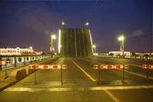Bridge in Saint-Petersburg — Zdjęcie stockowe