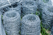Coils of barbed wire — Stock Photo