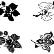 Stock Photo: Orchid hand-drawing set