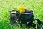 写真のバッグ ゴリゾント — ストック写真