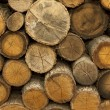Stock Photo: Piles of Wood Background