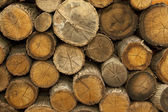 Piles of Wood Background — Stock Photo