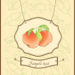Royalty-Free Stock Obraz wektorowy: Vintage card with apples