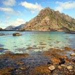 Lofoten coastal landscape — Stock Photo #3577685