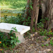 Bench under tree — Stock Photo