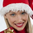 Attractive Santa girl - Stock Photo