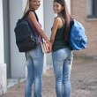 Happy students — Stock Photo #4050679