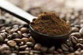 Coffee beans and ground with spoon — Stock Photo
