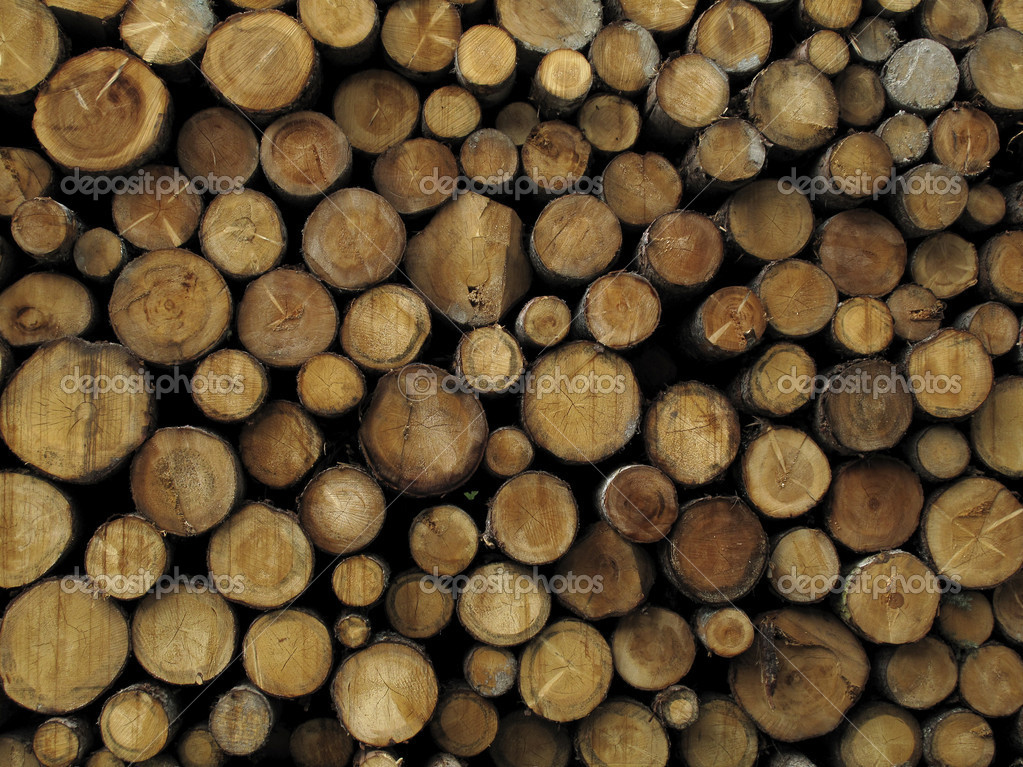 Stacked logs background  Stock Photo #4125121