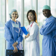 Portrait of multi-ethnic medical team — Stock Photo