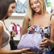 Young women doing shopping — Stock Photo #4167660