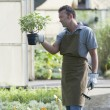 Gardener at work — Stockfoto
