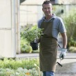 Gardener at work - Stock Photo