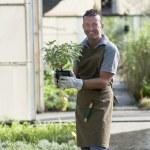 Gardener at work — Stock Photo